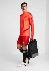 adidas Performance - FC BAYERN MÜNCHEN H SHO - Träningsshorts - red - 1