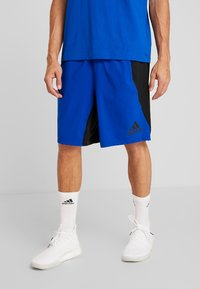 adidas Performance - 4KRFT SPORT 10-INCH LIGHTWEIGHT SHORTS - Sports shorts - collegiate royal/black - 0