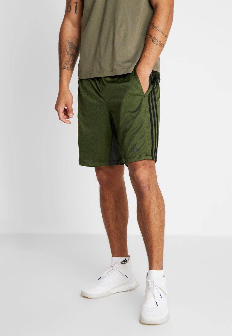 adidas Performance - Sports shorts - legear/heather