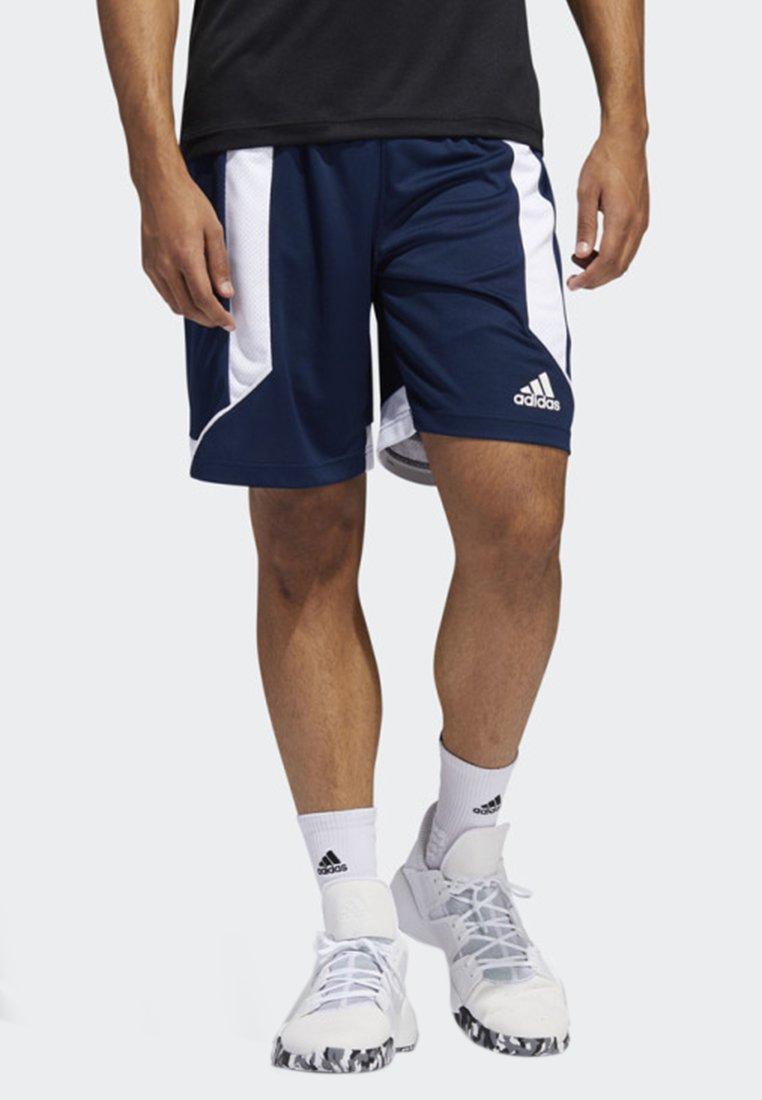 adidas Performance - CREATOR 365 SHORTS - kurze Sporthose - blue
