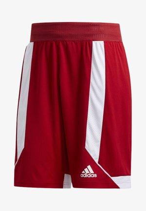 CREATOR 365 SHORTS - Short de sport - red/white
