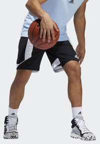 adidas Performance - CREATOR 365 SHORTS - Urheilushortsit - black - 2