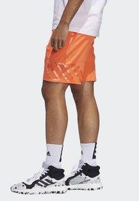 adidas Performance - N3XT L3V3L SHORTS - Korte broeken - orange - 2