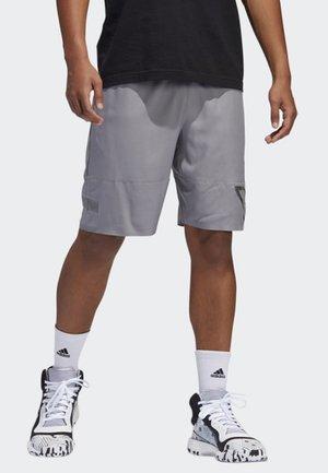 N3XT L3V3L SHORTS - Sports shorts - grey