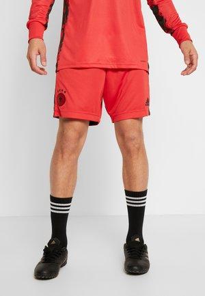 AD542E1NX-G11 - kurze Sporthose - glory red