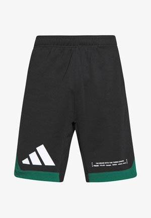 PACK SHORT - Short de sport - black/green