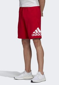 adidas Performance - MUST HAVES BADGE OF SPORT SHORTS - Sports shorts - red - 2