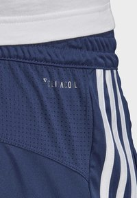 adidas Performance - DESIGN 2 MOVE CLIMACOOL 3-STRIPES SHORTS - kurze Sporthose - blue/white - 4