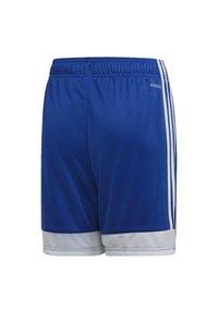 adidas Performance - TASTIGO 19 SHORTS - Short de sport - blue - 1