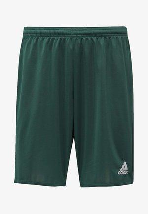 PARMA 16 SHORTS - Pantaloncini sportivi - green