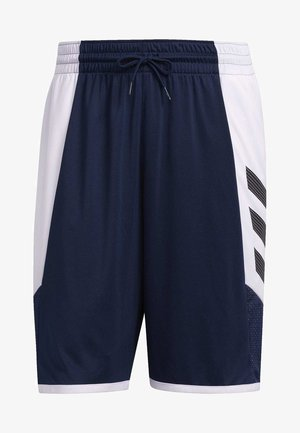 PRO MADNESS SHORTS - Sports shorts - blue