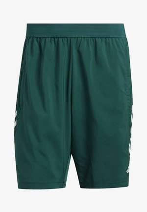 4KRFT 3-STRIPES 9-INCH SHORTS - Träningsshorts - green