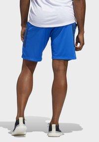 adidas Performance - 3-STRIPES 9-INCH SHORTS - Sports shorts - blue - 1