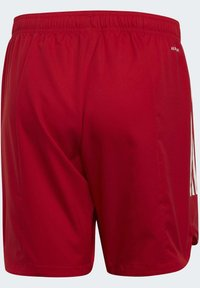 adidas Performance - CONDIVO 20 SHORTS - Sports shorts - red - 8
