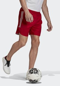 adidas Performance - CONDIVO 20 SHORTS - Sports shorts - red - 3