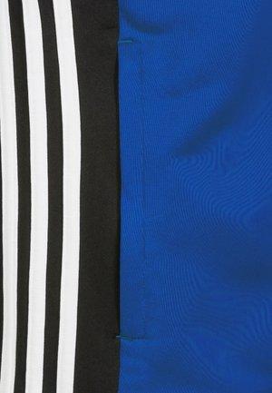 REGISTA 18 - Träningsjacka - blue