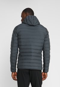 adidas Performance - VARILITE SOFT HOODED - Doudoune - carbon - 2