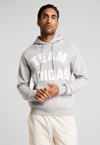 adidas Performance - VRCT HOODIE - Jersey con capucha - grey - 0