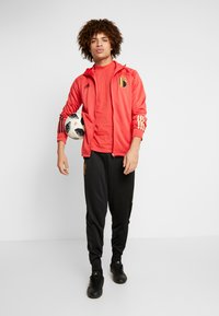 adidas Performance - National team wear - glory red/black - 1