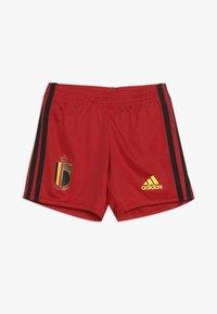 adidas Performance - BELGIUM RBFA HOME JERSEY MINI - Pantaloncini sportivi - red/black/yellow - 2