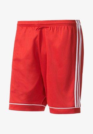 "KINDER ""SQUADRA 17"" - Sports shorts - rot"