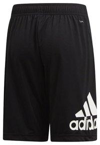 adidas Performance - TRAINING EQUIPMENT SHORTS - Short de sport - black/white - 1