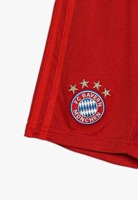 adidas Performance - FC BAYERN MÜNCHEN H SHO Y - Sports shorts - true red - 3