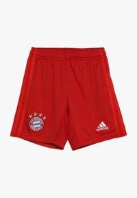 adidas Performance - FC BAYERN MÜNCHEN H SHO Y - Sports shorts - true red - 0
