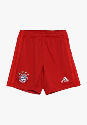 FC BAYERN MÜNCHEN H SHO Y - Short de sport - true red