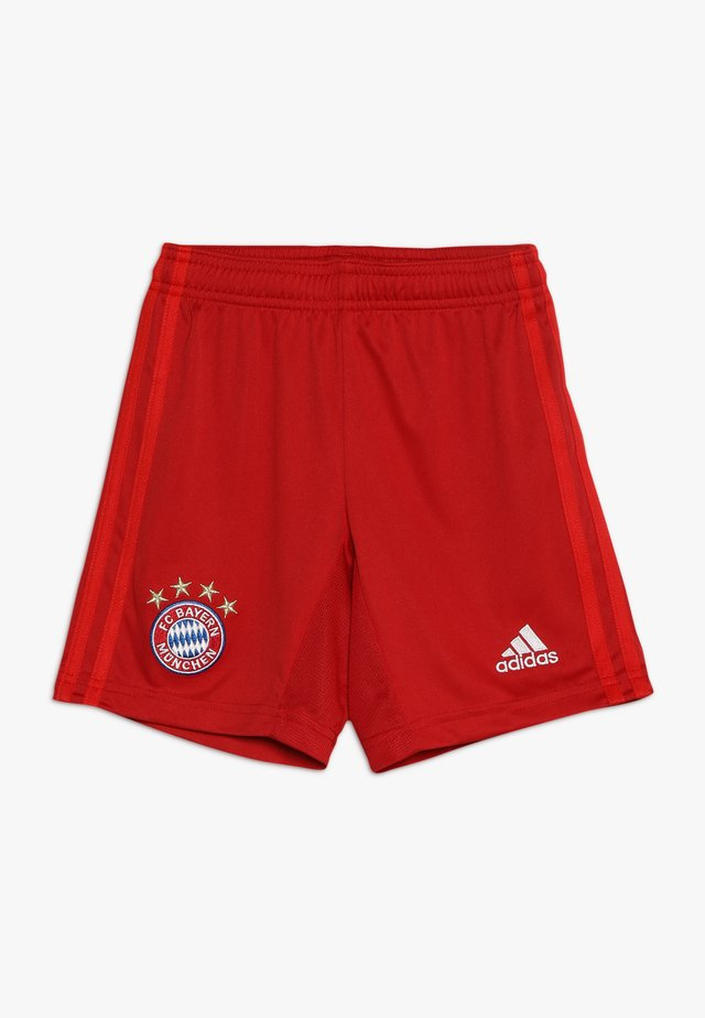 FC BAYERN MÜNCHEN H SHO Y - Sports shorts - true red