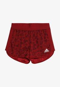 adidas Performance - Sports shorts - active maroon/maroon/white - 3