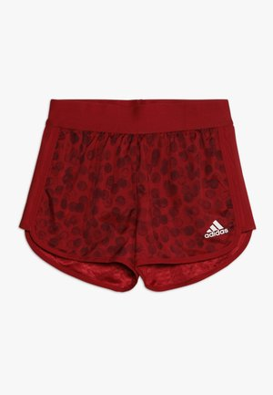 Sports shorts - active maroon/maroon/white