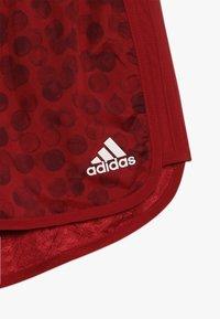 adidas Performance - Sports shorts - active maroon/maroon/white - 2