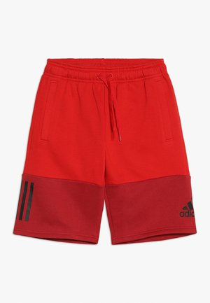 SID SHORT - Sports shorts - scarlet/maroon/black