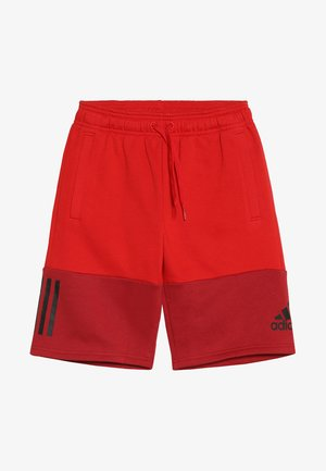 SID SHORT - Sportovní kraťasy - scarlet/maroon/black