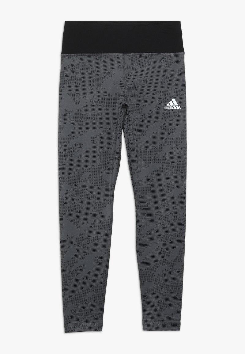 adidas Performance - WARM - Tights - grey/black