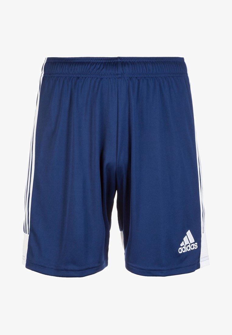 adidas Performance - TASTIGO  - Sports shorts - dark blue / white
