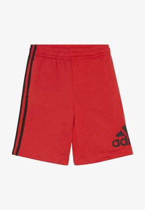 YOUNG BOYS MUST HAVE SPORT 1/4 SHORTS - Korte broeken - vivred/black