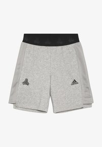 adidas Performance - Sports shorts - medium grey heather/black - 2