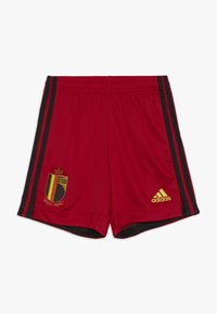 adidas Performance - BELGIUM RBFA HOME SHORTS - Pantaloncini sportivi - collegiate red - 0