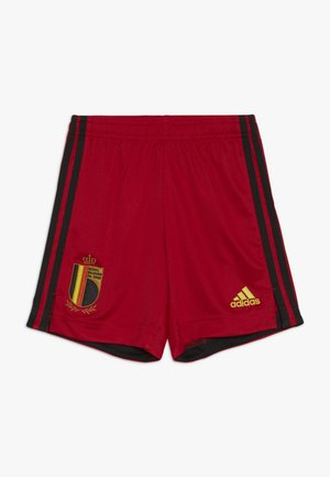 BELGIUM RBFA HOME SHORTS - Korte broeken - collegiate red