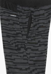 adidas Performance - Sportovní kraťasy - black/gresix - 4