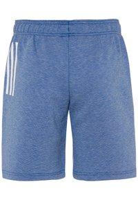 adidas Performance - Sportovní kraťasy - blue melange - 1