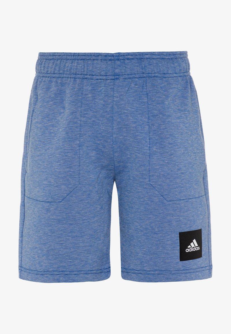 adidas Performance - Sportovní kraťasy - blue melange