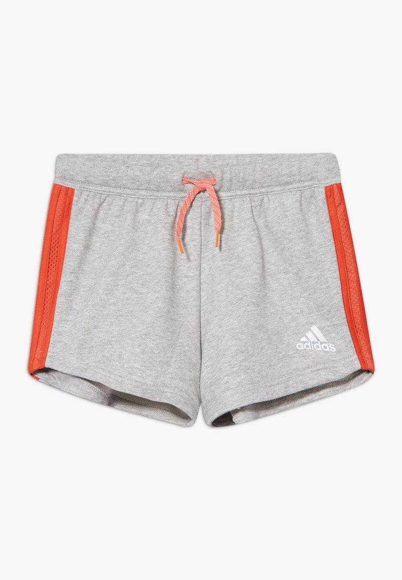 adidas Performance - BOLD  - Pantaloncini sportivi - mid grey heather