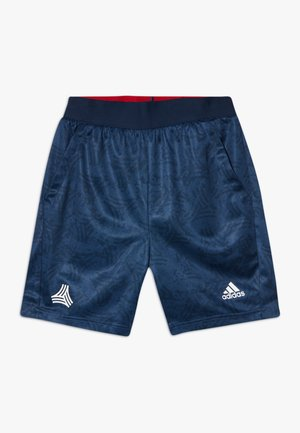 Sports shorts - tecind/conavy/white