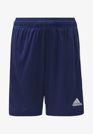 TASTIGO 19 SHORTS - Sports shorts - blue