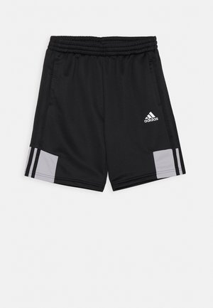 SHORT - Urheilushortsit - black/grey