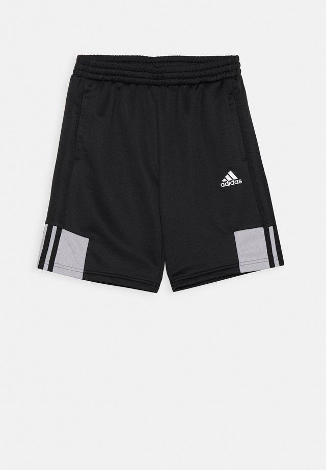 SHORT - Pantalón corto de deporte - black/grey