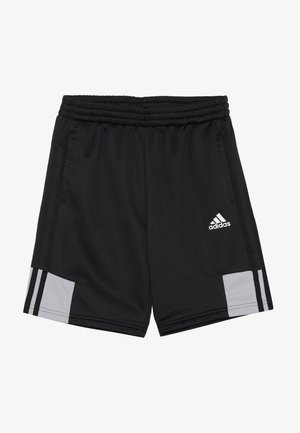 SHORT - Korte broeken - black/grey